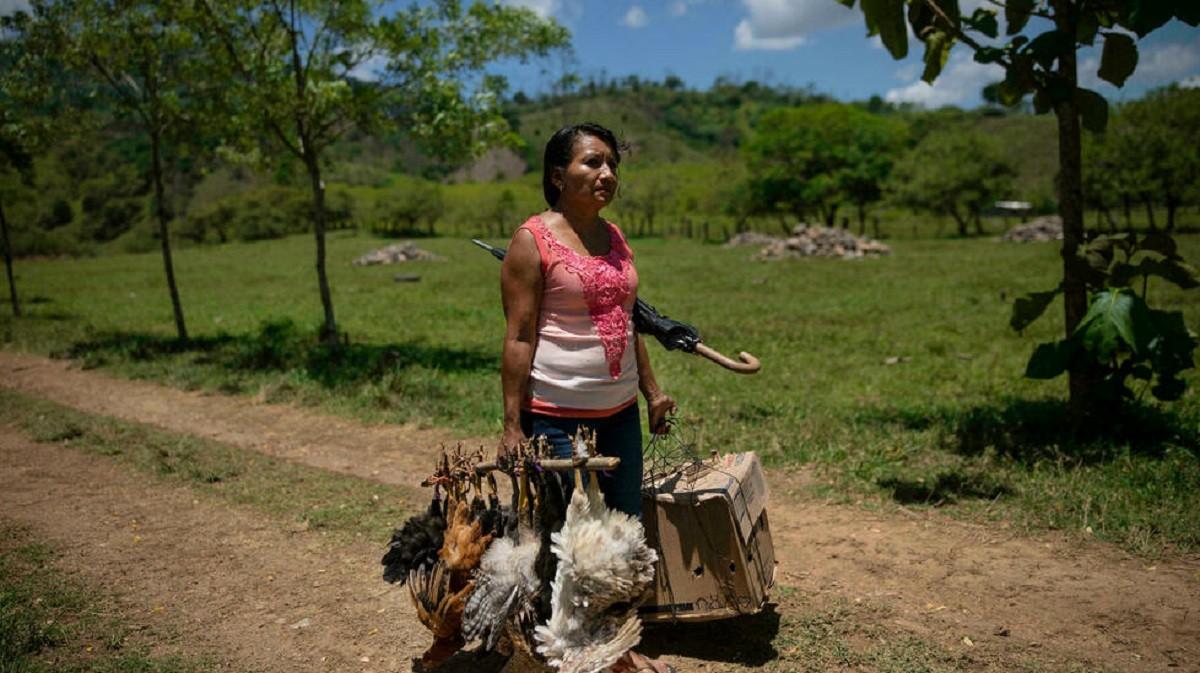 Una_vendedora_de_pollos_en_San_Francisco_de_Asís_Honduras_21_de_junio_de_2021._AP_copy.jpg