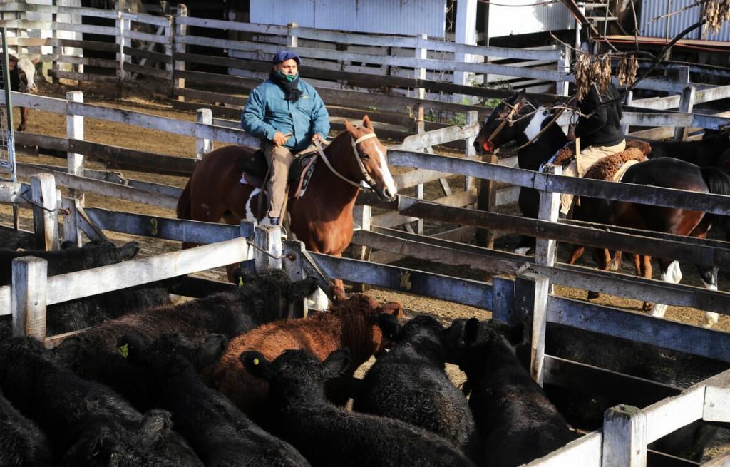 El principal comprador de la carne uruguaya fue China.