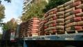 Los despachos de cemento acumulan seis meses consecutivos de crecimiento